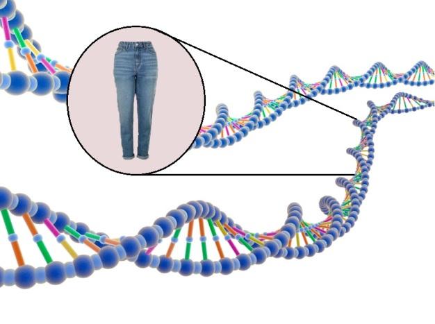 genes-jeans5